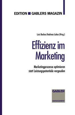 Effizienz im Marketing (Paperback)