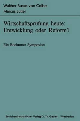 Wirtschaftsprufung Heute: Entwicklung Oder Reform? - Bochumer Beitrage zur Unternehmensfuhrung und Unternehmensforschung 20 (Paperback)
