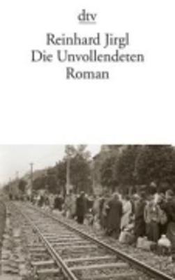 Die Unvollendeten (Paperback)