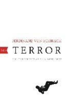Terror (Paperback)