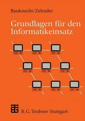 Grundlagen Fur Den Informatikeinsatz - Leitfaden Der Informatik (Paperback)