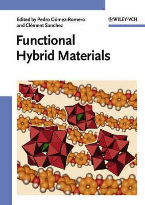 Functional Hybrid Materials (Hardback)