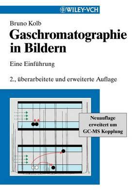 Gaschromatographie in Bildern: Eine Einfuhrung (Paperback)