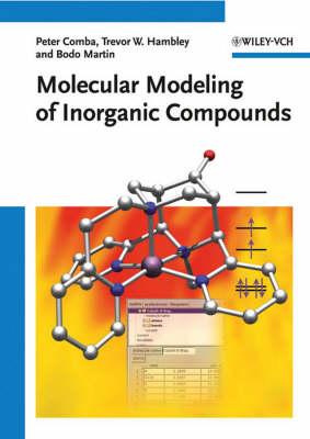 Molecular Modeling of Inorganic Compounds (Hardback)