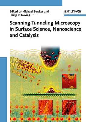 Scanning Tunneling Microscopy in Surface Science, Nanoscience, and Catalysis (Hardback)