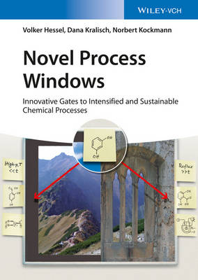 Novel Process Windows: Innovative Gates to Intensified and Sustainable Chemical Processes (Hardback)