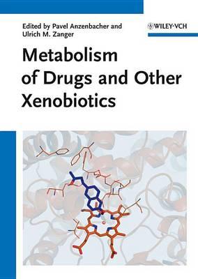 Metabolism of Drugs and Other Xenobiotics (Hardback)
