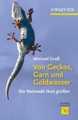 Von Geckos, Garn und Goldwasser: Die Nanoweltwelt Lasst Grubetaen - Erlebnis Wissenschaft (Hardback)