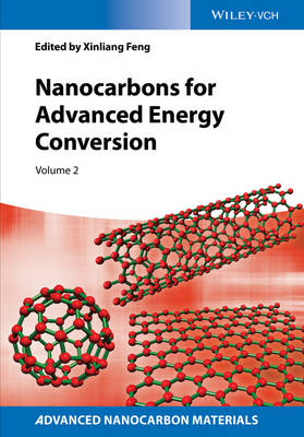 Nanocarbons for Advanced Energy Conversion (Hardback)