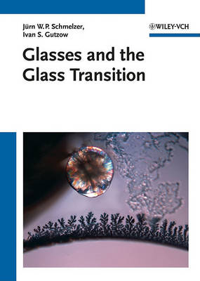 Glasses and the Glass Transition (Hardback)