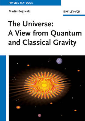 The Universe: A View from Classical and Quantum Gravity (Paperback)
