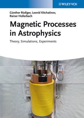 Magnetic Processes in Astrophysics: Theory, Simulations, Experiments (Hardback)