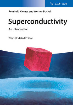 Superconductivity: An Introduction (Paperback)