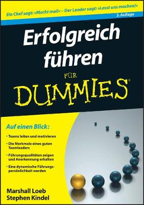 Erfolgreich fuhren fur Dummies - Fur Dummies (Paperback)
