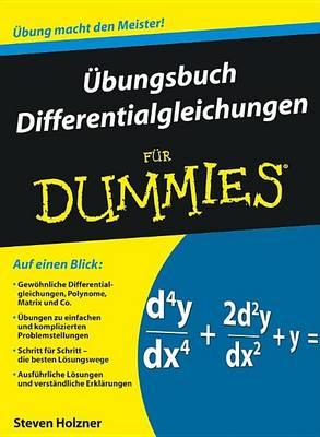 Ubungsbuch Differentialgleichungen Fur Dummies - Fur Dummies (Paperback)