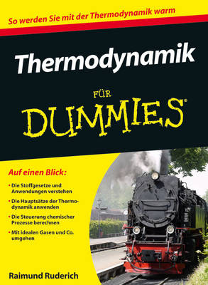 Thermodynamik Fur Dummies - Fur Dummies (Paperback)