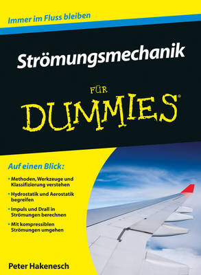 Stroemungsmechanik fur Dummies - Fur Dummies (Paperback)
