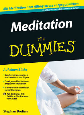 Meditation fur Dummies - Fur Dummies (Paperback)