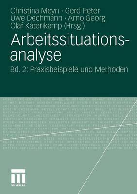 Arbeitssituationsanalyse: Bd. 2: Praxisbeispiele Und Methoden (Paperback)