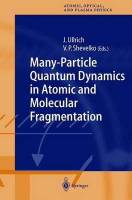 Many-Particle Quantum Dynamics in Atomic and Molecular Fragmentation - Springer Series on Atomic, Optical, and Plasma Physics 35 (Hardback)