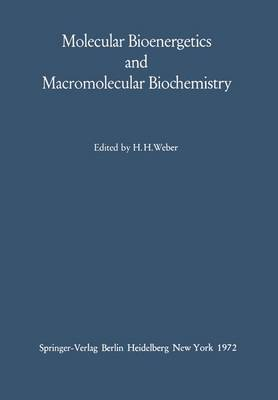 Molecular Bioenergetics and Macromolecular Biochemistry: Meyerhof-Symposium Heidelberg, July 5-8, 1970 (Hardback)