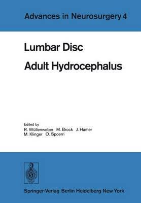 Lumbar Disc Adult Hydrocephalus: Proceedings of the 27th Annual Meeting of the Deutsche Gesellschaft Fur Neurochirurgie, Berlin, September 12-15, 1976 - Advances in Neurosurgery 4 (Paperback)