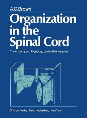 Organisation in the Spinal Cord: The Anatomy and Physiology of Identified Neurones (Hardback)