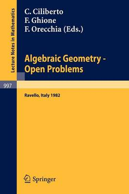 Algebraic Geometry: Open Problems - Lecture Notes in Mathematics No. 997 (Paperback)
