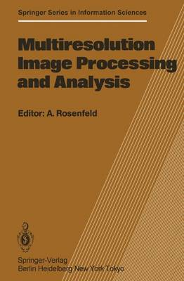 Multiresolution Image Processing and Analysis: Workshop: Papers - Springer Series in Information Sciences 12 (Hardback)