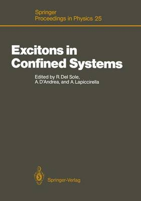 Excitons in Confined Systems: International Meeting: Papers - Springer Proceedings in Physics 25 (Hardback)