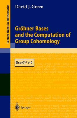 Groebner Bases and the Computation of Group Cohomology - Lecture Notes in Mathematics 1828 (Paperback)