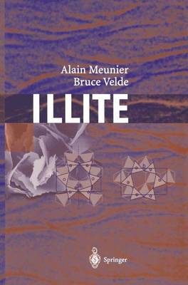 Illite: Origins, Evolution and Metamorphism (Hardback)