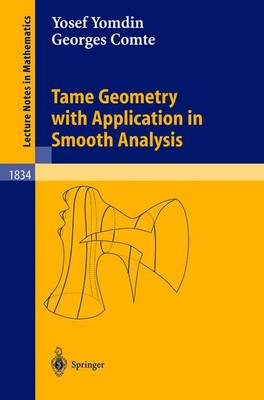 Tame Geometry with Application in Smooth Analysis - Lecture Notes in Mathematics 1834 (Paperback)
