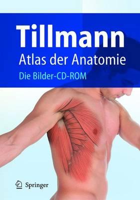 Atlas Der Anatomie: Die Bilder-CD-Rom (CD-ROM)