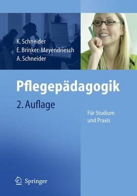 Pflegepadagogik: Fur Studium Und Praxis (Paperback)