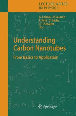 Understanding Carbon Nanotubes: From Basics to Applications - Lecture Notes in Physics 677 (Hardback)