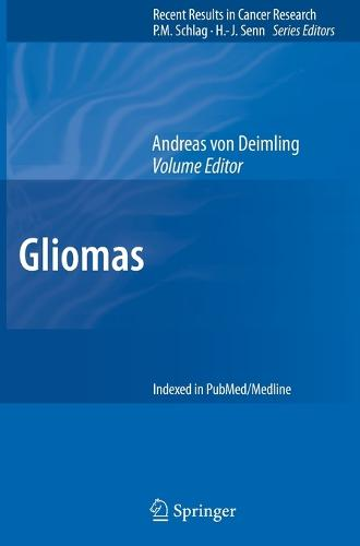 Gliomas - Recent Results in Cancer Research 171 (Hardback)
