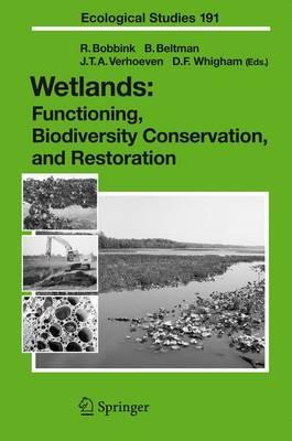 Wetlands: Functioning, Biodiversity Conservation, and Restoration - Ecological Studies v. 191 (Hardback)