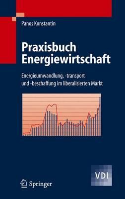 Praxisbuch Energiewirtschaft: Energieumwandlung, -Transport Und -Beschaffung Im Liberalisierten Markt (Book)