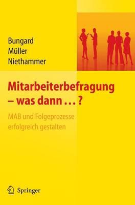 Mitarbeiterbefragung - Was Dann...?: MAB Und Folgeprozesse Erfolgreich Gestalten (Book)