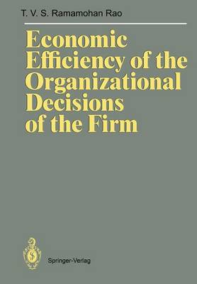 Economic Efficiency of the Organizational Decisions of the Firm (Paperback)