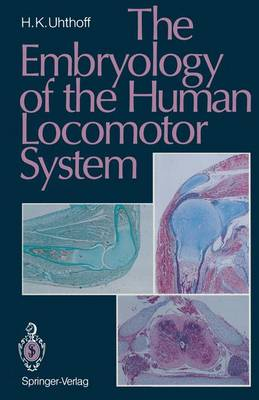 The Embryology of the Human Locomotor System (Hardback)