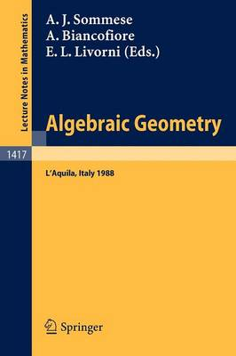 Algebraic Geometry: International Conference Proceedings (Paperback)