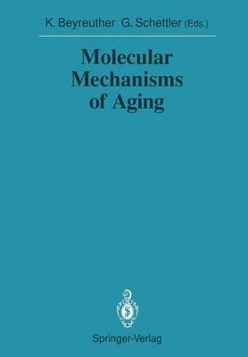 Molecular Mechanisms of Aging - Sitzungsberichte der Heidelberger Akademie der Wissenschaften 1990 / 1990/2 (Paperback)