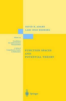 Function Spaces and Potential Theory - Grundlehren der mathematischen Wissenschaften 314 (Hardback)