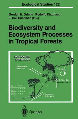 Biodiversity and Ecosystem Processes in Tropical Forests - Ecological Studies v. 122 (Hardback)