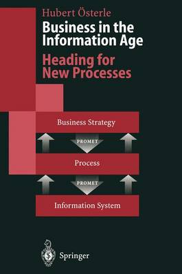 Business in the Information Age: Heading for New Processes (Hardback)