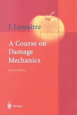 A Course on Damage Mechanics (Paperback)