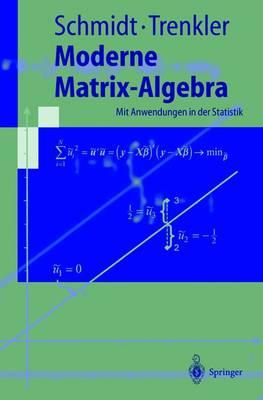 Moderne Matrix-Algebra: Mit Anwendungen in Der Statistik - Springer-Lehrbuch (Paperback)