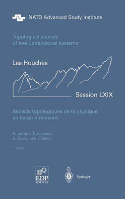 Aspects Topologiques De La Physique En Basse Dimension. Topological Aspects of Low Dimensional Systems - Les Houches: Ecole D'ete de Physique Theorique v. 69 (Hardback)